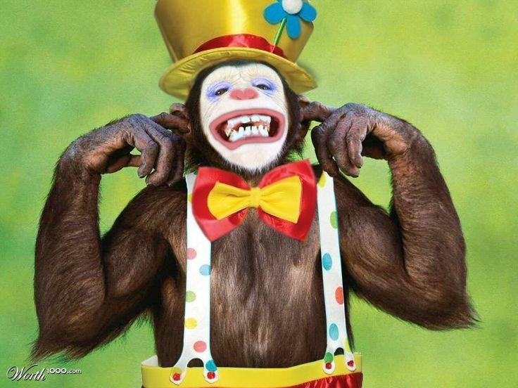 64cedfe482f6b1aaf64484a3f61c91a9--not-my-circus-clowns.jpg