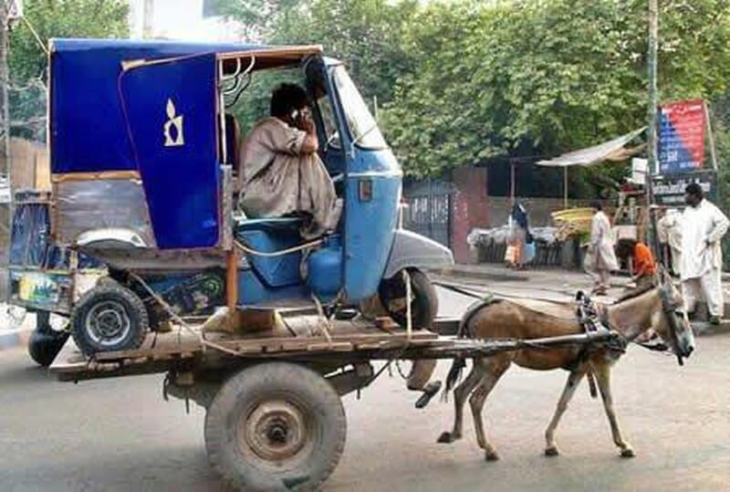 best-funny-humor-2013-most-funny-pictures-ever-rikshaw-on-donkey-cart-humor.jpg