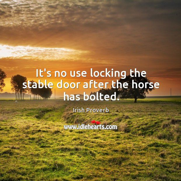 its-no-use-locking-the-stable-door-after-the-horse-has-bolted.jpg