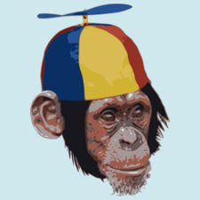 propeller-beanie-chimp-t-shirt.jpg