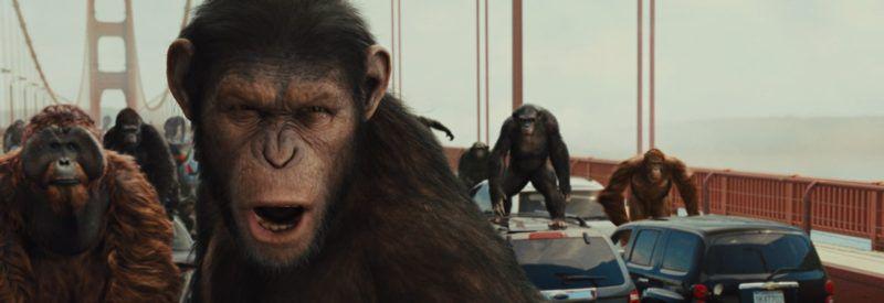 rise-planet-apes-golden-gate-bridge.jpg