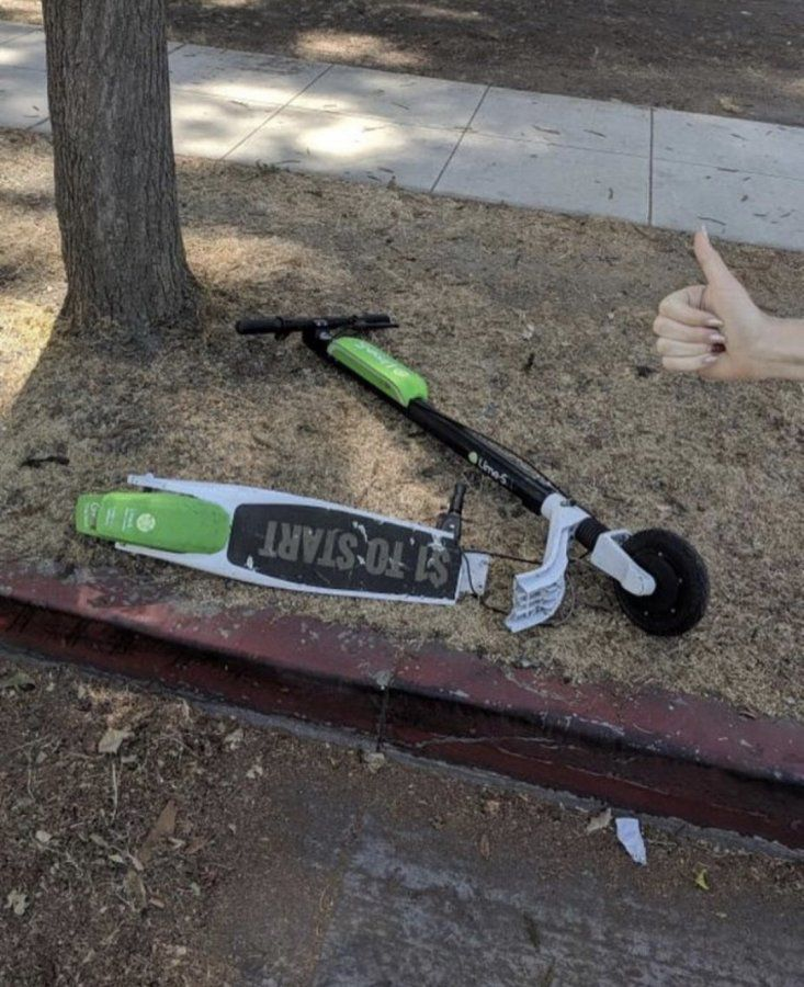 Bird and lime scooters' graveyard    | Uber Drivers Forum
