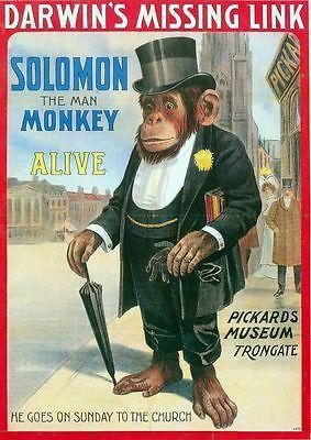 soloman-the-man-monkey-victorian-glasgow-circus-poster-a3-a2-print-17084-p.jpg
